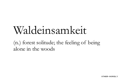 waldeinsamkeit: Definition, Quotes, Being Alone, Forest Solitude, German Word, Woods, Feelings
