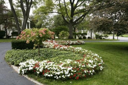 1000 images about landscaping on pinterest for Premier landscape design