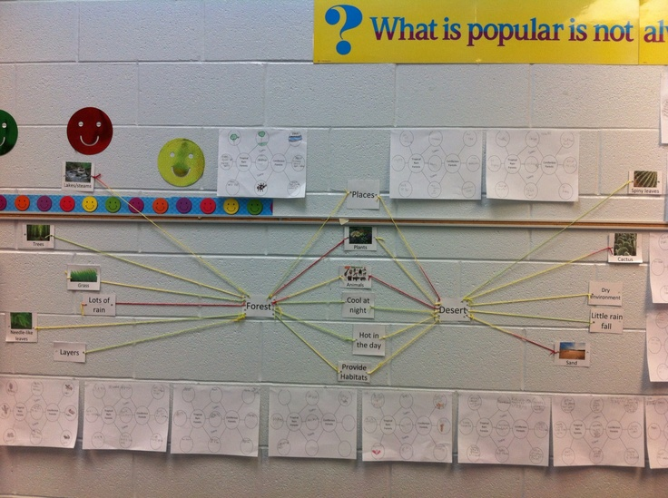 Had my lesson today over compare and contrast which was a reading lesson...I was able to bring in science by comparing and contrasting the different ecosystems which they are leaning....the activity we did together was making a double bubble map with picture/word cards and string by comparing and contrasting the forest to the desert....the students on their own did a double bubble map on paper comparing and contrasting two different types of forests