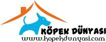 Köpek türleri nasıl beslenmeli, yetirme, eğitim sahiplendirme gibi aradığınız her tür bilgi bu sitede. http://www.kopekdunyasi.com
