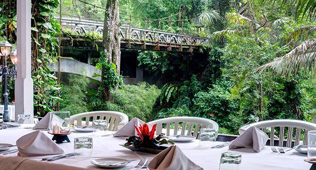 bridges restaurant ubud - Google Search