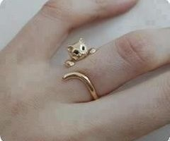 for that special cat-lover one
