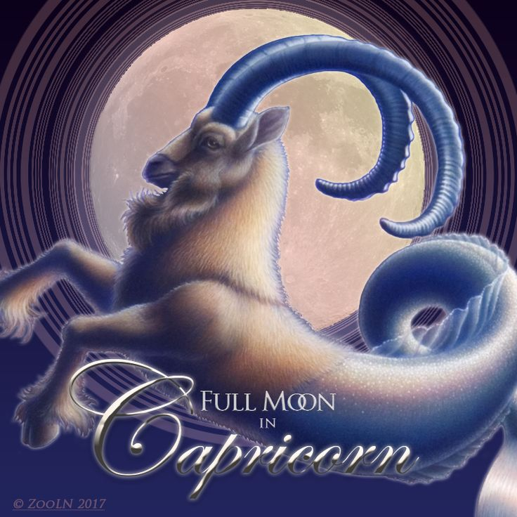 Full Moon in Capricorn.