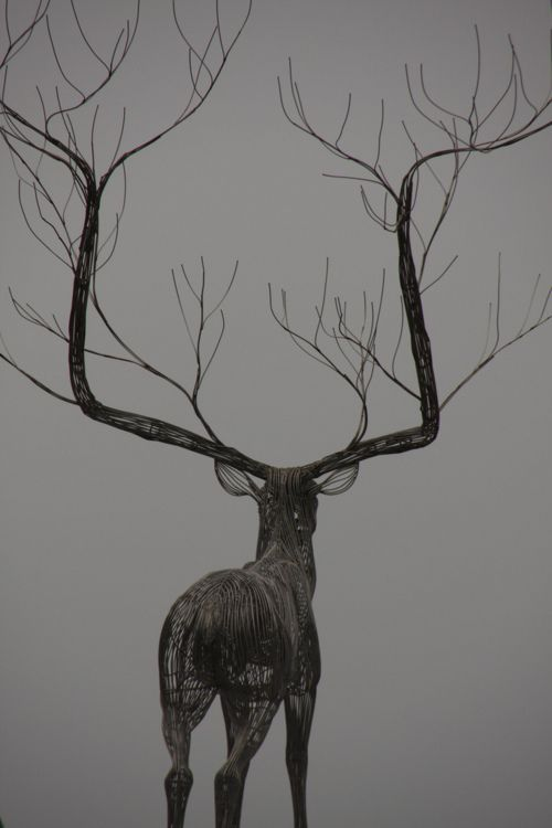 Sculpture by Byeong Doo MoonByeong Doo, Dreams Big, Inspiration Photography, Antlers Design, Deer Sculpture, Doo Moon, Trees, Wire Animal Sculpture, Wire Art