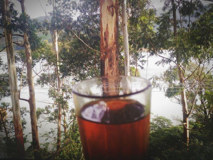 #Munnar_Nature_Morning_Tea