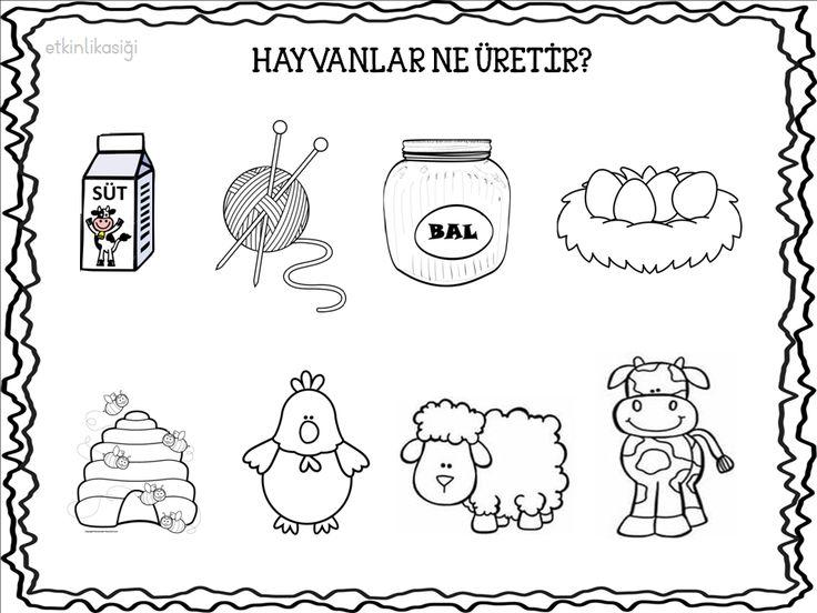 hayvanların ürettikleri