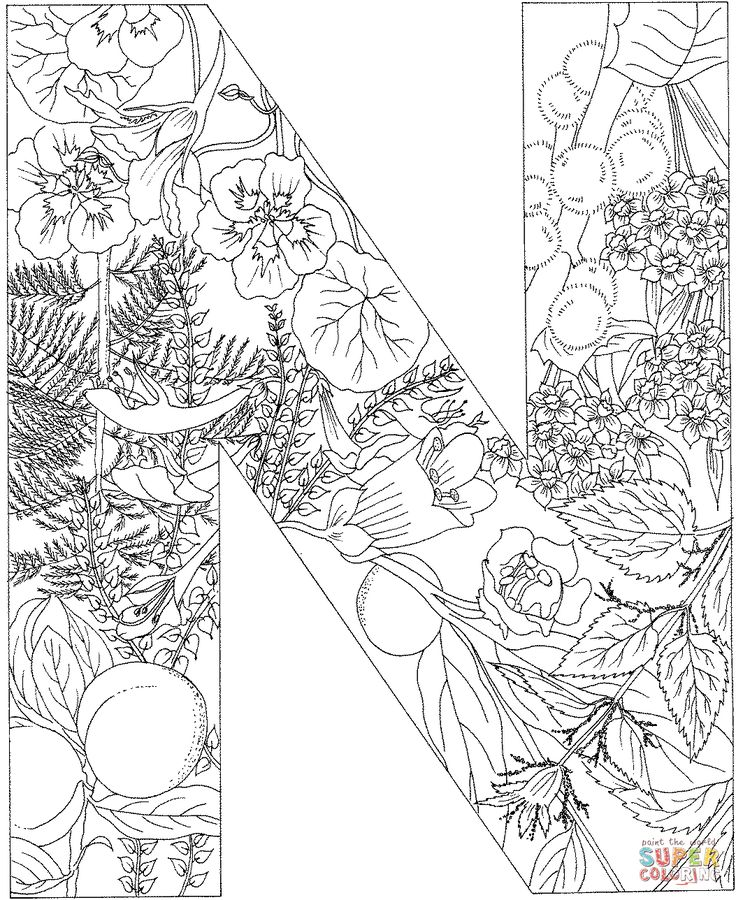 der buchstabe n  alphabet coloring pages printable