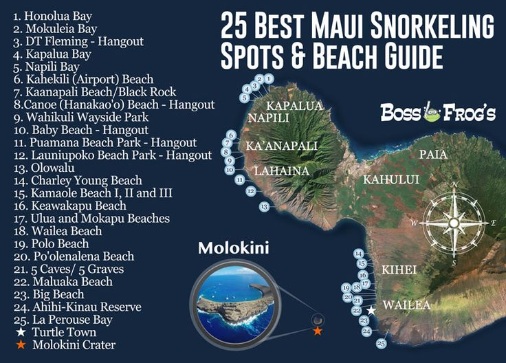Maui Snorkeling & Beach Map. Honolua Bay, Kapalua Bay, Kaanapali Beach, Wahikuli Wayside, Puamana Beach, Olowalu, Wailea Beach, Polo Beach, 5 Caves, Maluaka Beach, Big Beach, Ahihi-Kinau Reserve, Turtle Town, Molokini Crater.