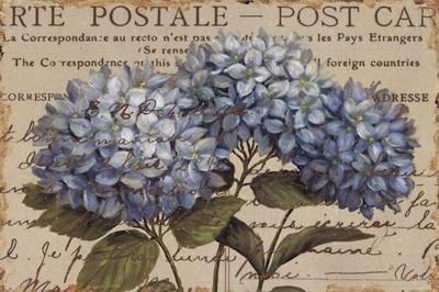 MI BAUL DEL DECOUPAGE: LAS MARAVILLAS DE DAPHNE BRISSONNET. 1 parte great clip art website