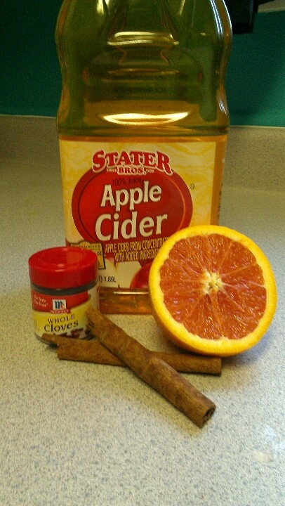 Homemade hot apple cider bottle of apple cider cinnamon stick a few ...