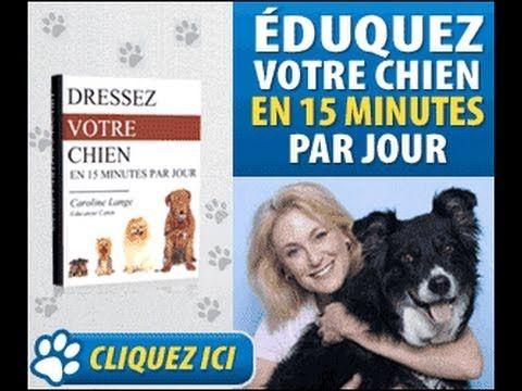Avis Dressez votre chien en 15 minutes par jour Livre Pdf