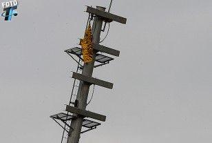 La Torre de iluminación y la bandera colgada, hecha con camisetas de los aurinegros.