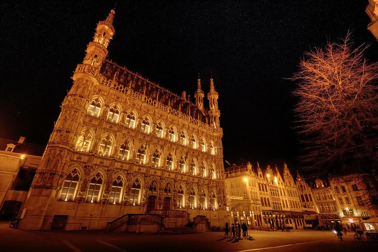 Leuven Town Hall and Grote Markt, Belgium