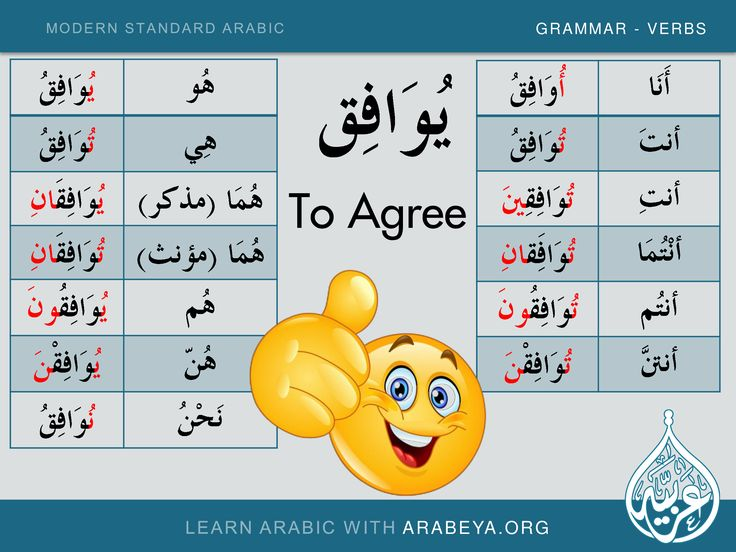 Are there government programs that will pay for me to learn Arabic?