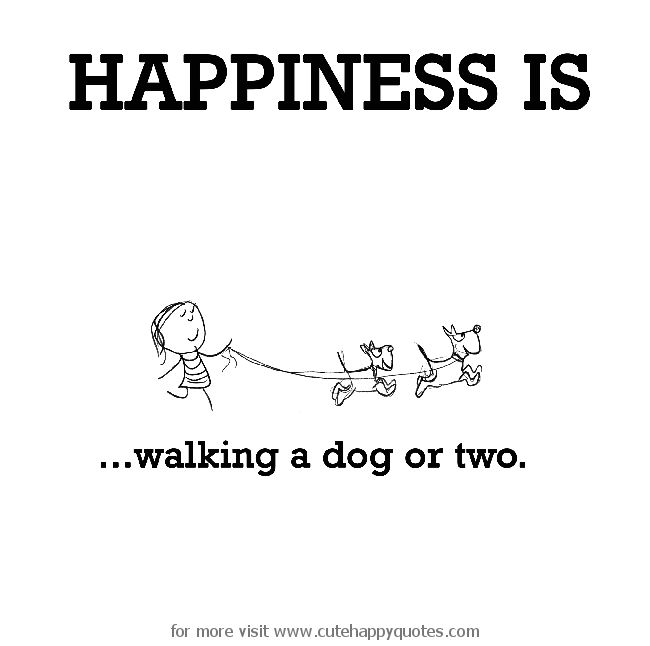 Happiness is, walking a dog or two.