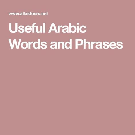useful arabic phrases and words pdf