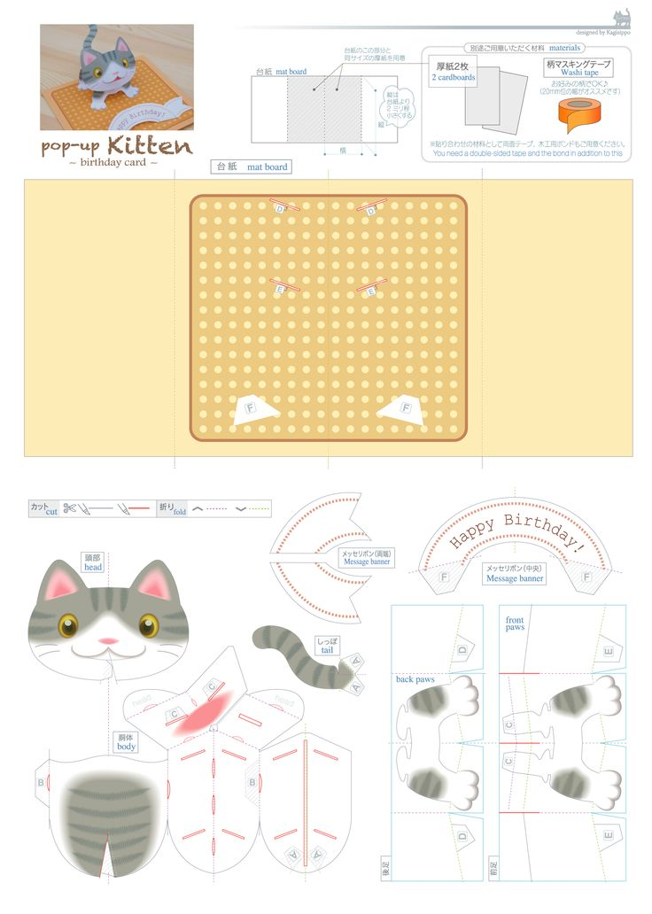 некоторые 3д открытки шаблоны кошка топовых американских гитар