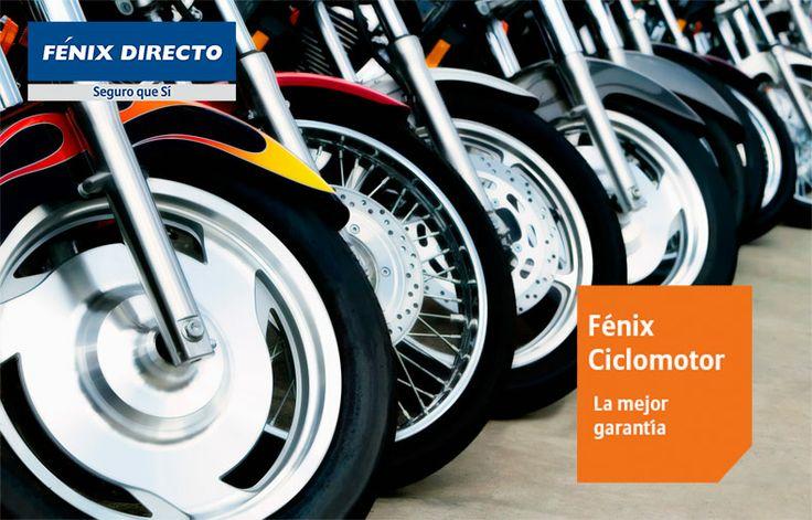 Fénix Ciclomotor la mejor garantía