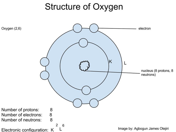 Structure of the oxygen atom showing its electronic