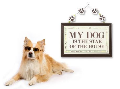 "Image of ""My Dog Is The Star Of The House"" Sign"