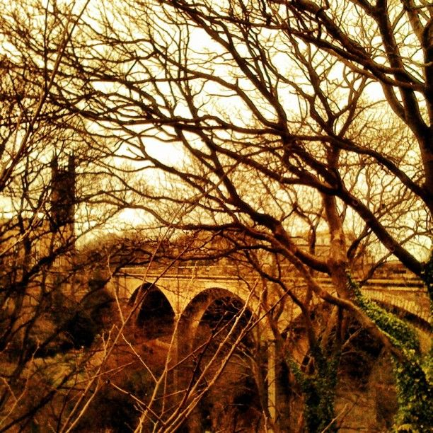 """Thomas Telford's Dean Bridge, Edinburgh, by Boo Paterson - which features in Peter May's """"The Lewis Man"""" book"""