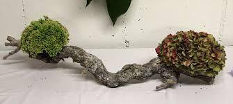 Afbeeldingsresultaat voor bloemstuk met hout en hortensia