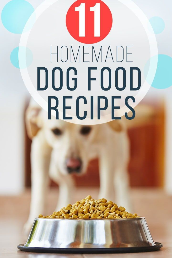 Diy Homemade Dog Food Recipes How To Cook Or Prepare Meals For