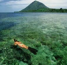 Snorkeling, Maluku Beach, white sand