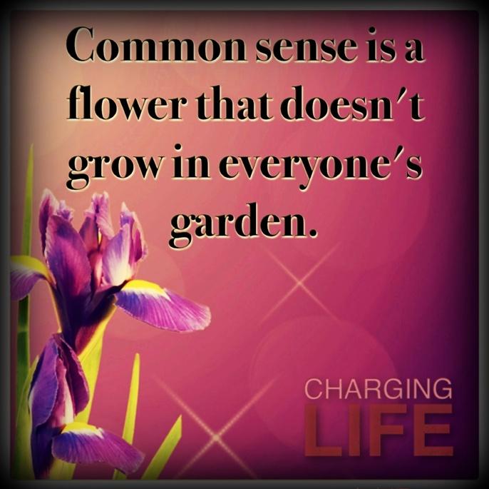 398 best Quotes images on Pinterest   Garden ideas, Gardening ...