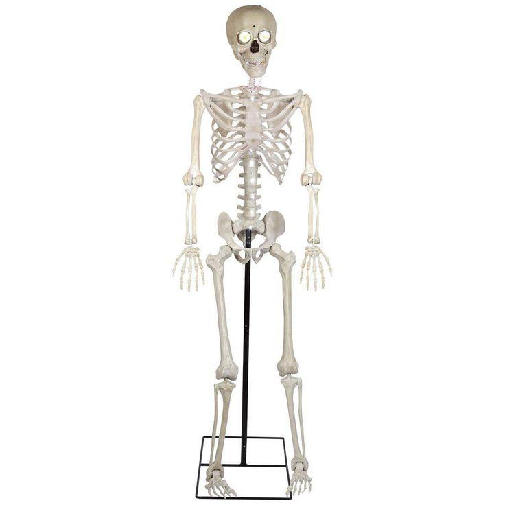 5' Life Size Bony Tony w/ Mic Animated Halloween Prop
