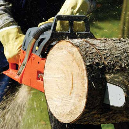 """Chainsaw Maintenance Basics - Tools - GRIT Magazine It is vital to have equipment that is """"ready and willing"""" to perform the task at hand whether it is clearing away a new food plot, shooting lanes, or even trails to your stand, equipment must work at all cost."""