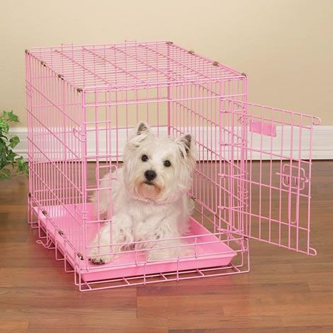 Perfect pink dog cage. http://www.worldstores.co.uk/p/Sky_Pet_Dog_Crate_in_Pink.htm