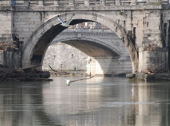 https://www.romasparita.eu/storia-cultura/files/2012/09/tevere_roma.jpg