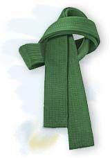 Lean Green Belt van UNC Plus Delta, Juli 2013