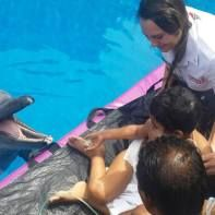 Finally.....Muhammad's Dream of touching a dolphin....came true.