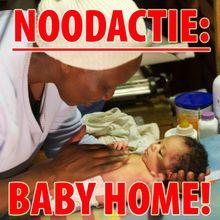 NOODACTIE BABY HOME! ACTIE GESLAAGD, BABY HOME GEOPEND!!  Wat geweldig!! Het bedrag is compleet, de noodactie geslaagd. € 5.000 euro voor het Baby Home, die op 29 juli geopend is. De MAMAS zijn dolgelukkig en opgelucht. Dank aan iedereen die heeft bijgedragen! Jullie hebben hét verschil gemaakt in de levens van pasgeboren hummels, die nu eindelijk 24/7 kunnen rekenen op de liefdevolle zorg die ze verdienen: https://www.justgiving.nl/nl/pages/6875-noodactie-baby-home
