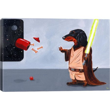 Dach Jedi Canvas Print  at Joss and Main