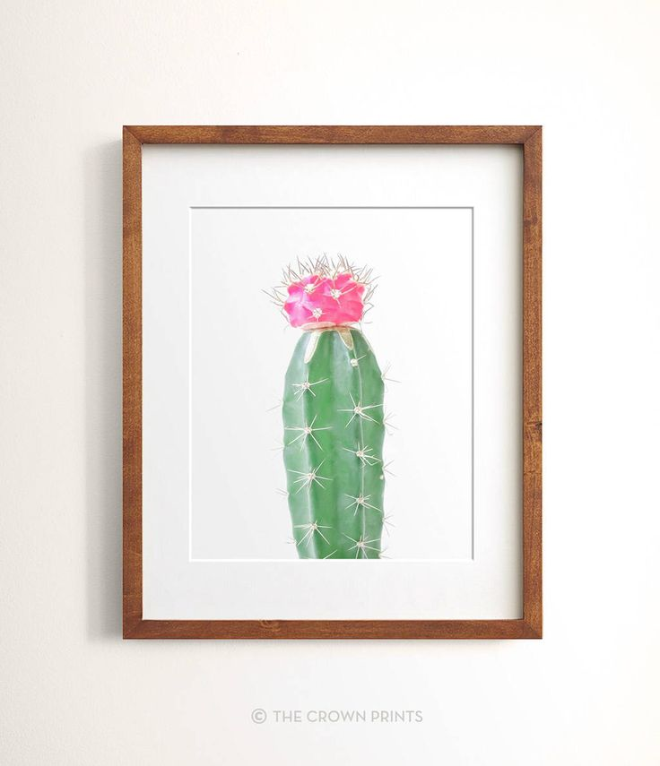 Cactus print, PRINTABLE art, Cactus Photography, Cactus Wall Art, Succulent Print, Cacti, Minimalist Art, Cactus Decor, Pink and green by TheCrownPrints on Etsy https://www.etsy.com/listing/461641678/cactus-print-printable-art-cactus