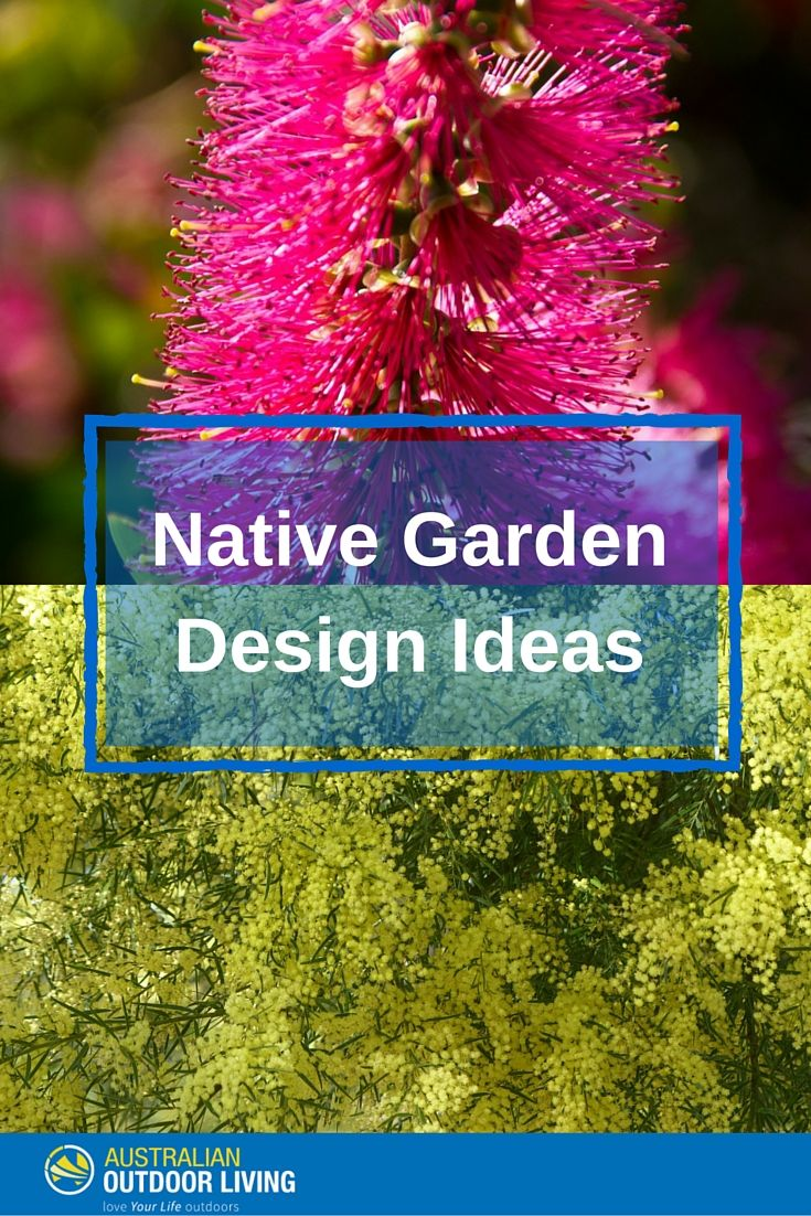 Create a gorgeous Australian Native Garden with some fab tips from our Ultimate Guide to Garden Design Ideas!