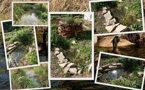 Bylinková spirála s jezírkem  Permadesign | Design přírodních zahrad