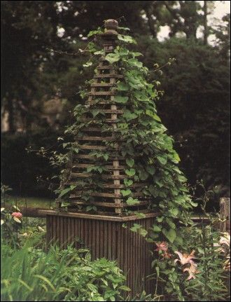 17 best images about garden diy carpentry on pinterest for Garden obelisk designs