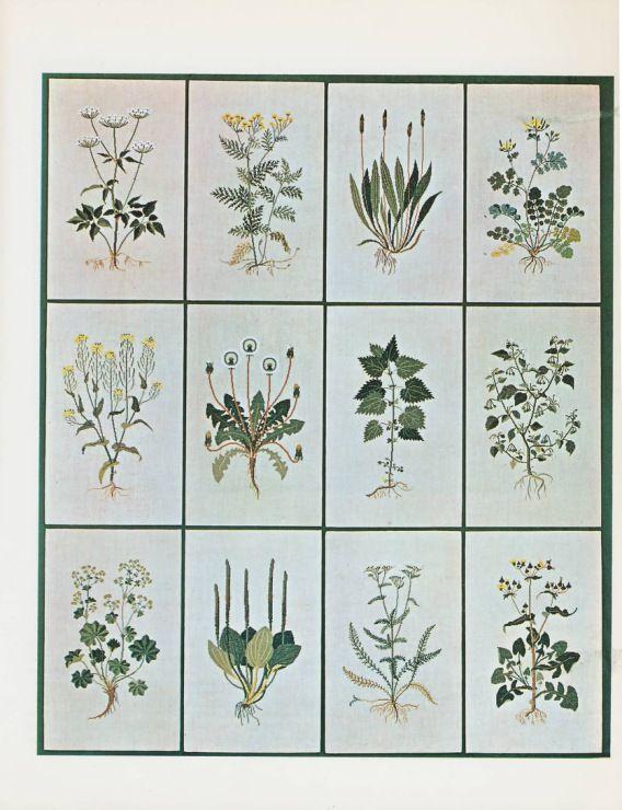 Gallery.ru / Фото #23 - Gerda Bengtsson's Book of Danish Stitchery - Mosca