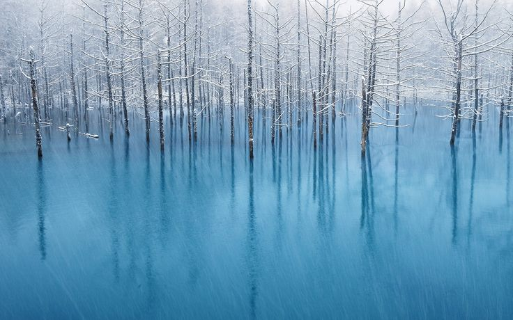 Blue Pond in inverno– Foto di Halil Gokdal