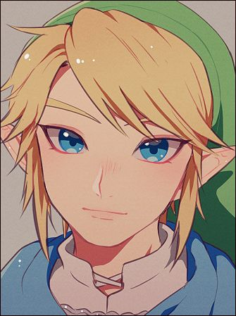 Hyrule warriors... look, I'm a huge zelda fan  -I'm obsessed- but I didn't like Links design in HW. Though this artwork is great! Great job!