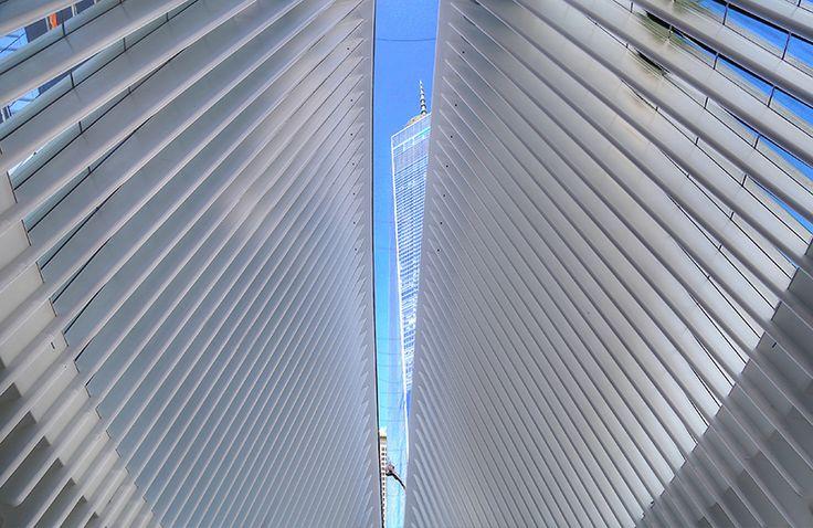 santiago-calatrava-world-trade-center-transportation-hub-oculus-new-york-designboom-02