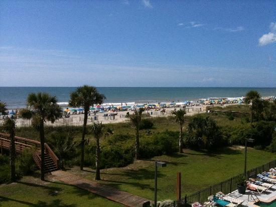 myrtle beach south carolina | South Wind On The Ocean (Myrtle Beach, Carolina del Sur) - Hotel ...