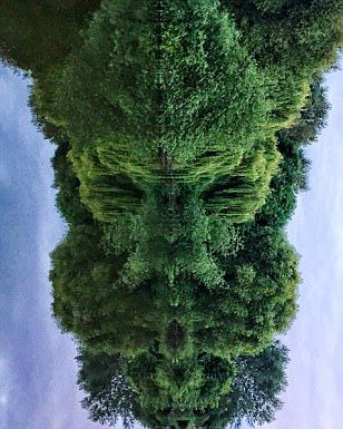 Can you see the Viking God? Lee Roberts couldn't believe his eyes when he flipped this picture of some weeping willows by the River Severn in Shrewsbury