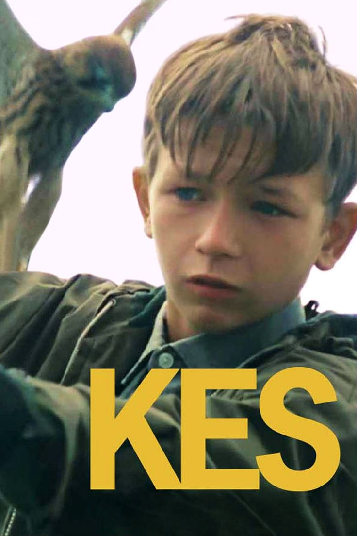 kes film - Google Search