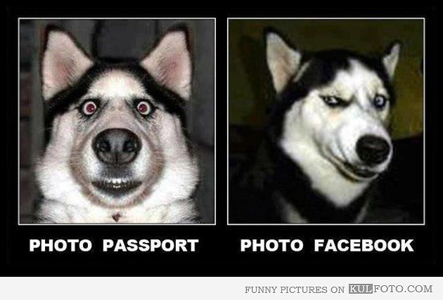 Passport and Facebook pictures compared - Funny picture comparison of the passport photos and Facebook profile photos. SO FUNNY!!! :D