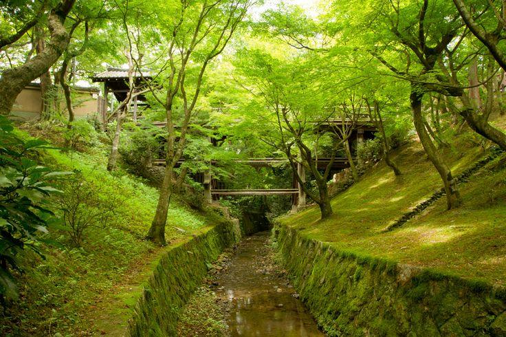 17 Best Images About Tofukuji Zen Garden Kyoto Japan On